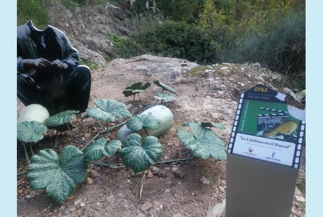 Imagen 8 de Encuentro en Albacete 13 al 15 de noviembre de 2015
