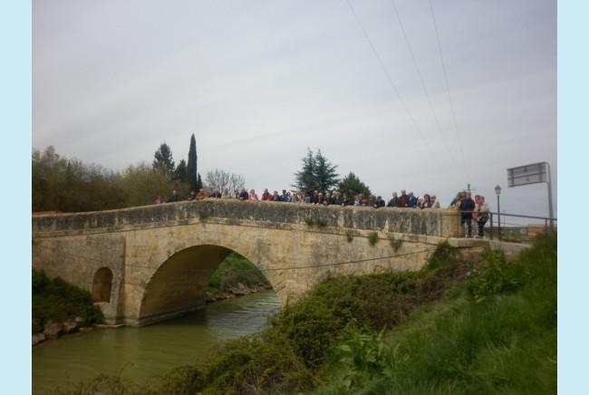 Imagen 10 de Excursión por Tierras de Palencia